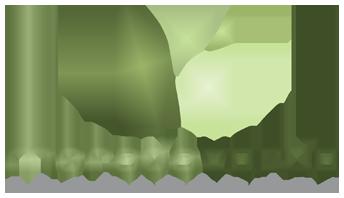 Morada Verde